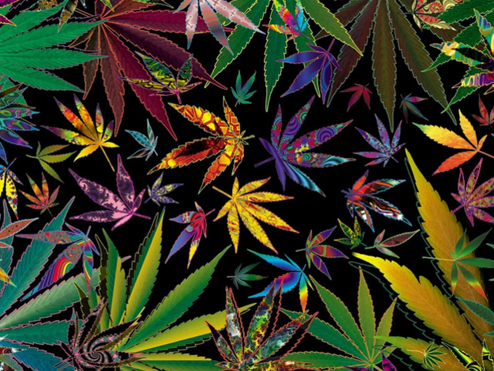 trippy multi pot leaves marijuana leaf white background Marijuana Leaf Transparent Background